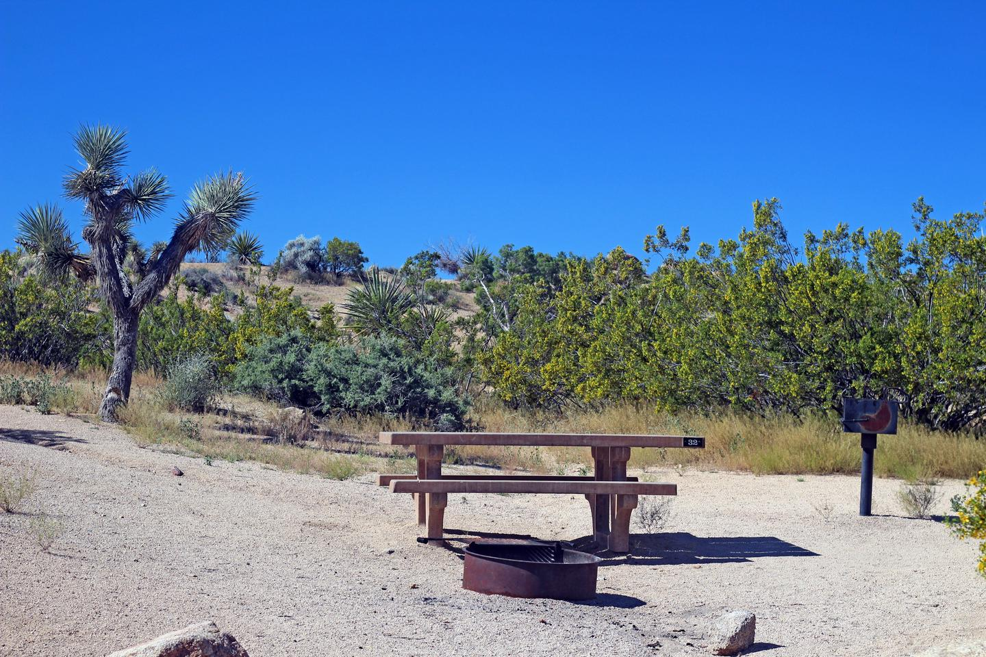 Campsite  with picnic table surrounded by boulders and green plants.Campsite