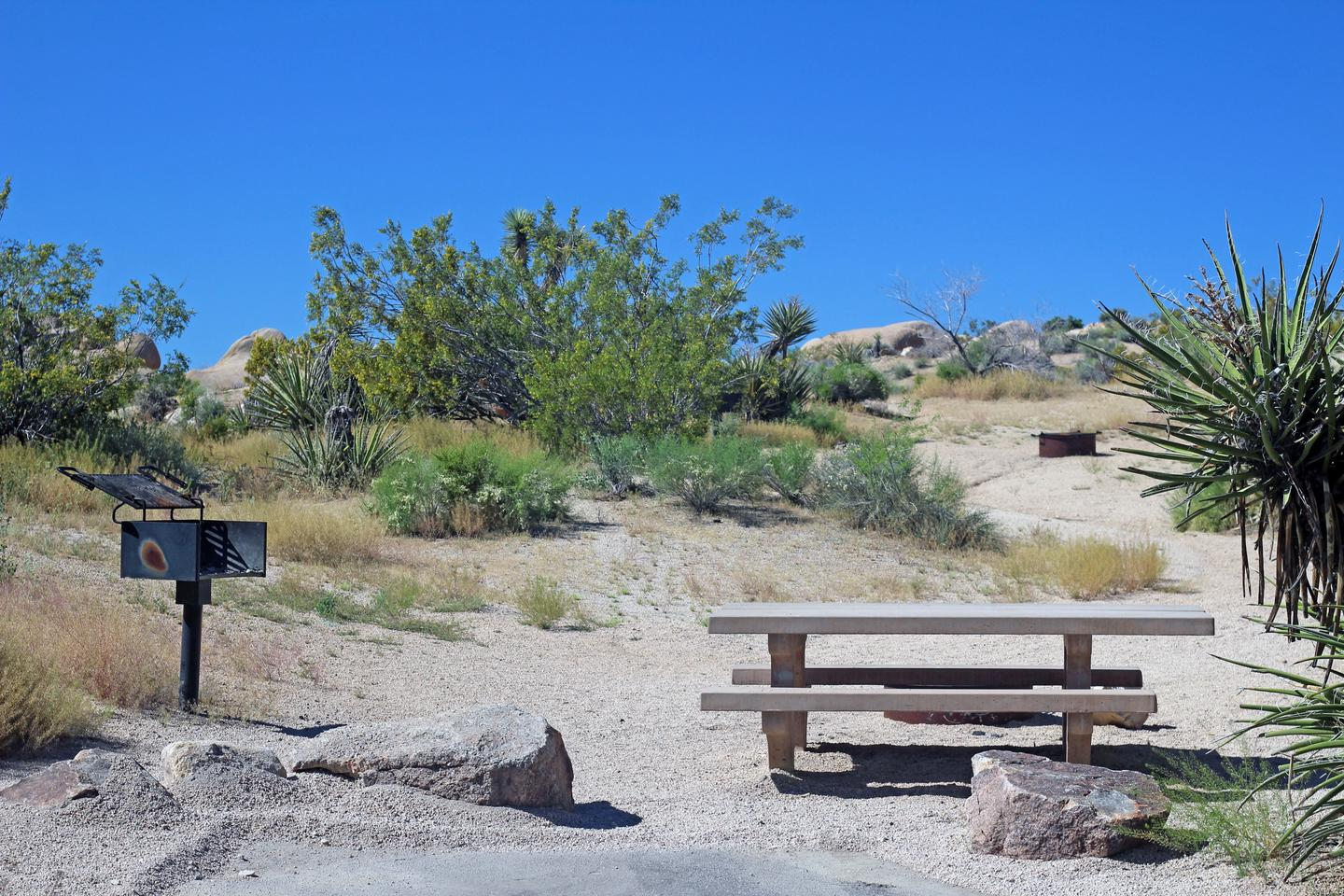 Campsite  with picnic table surrounded by boulders and green plants.