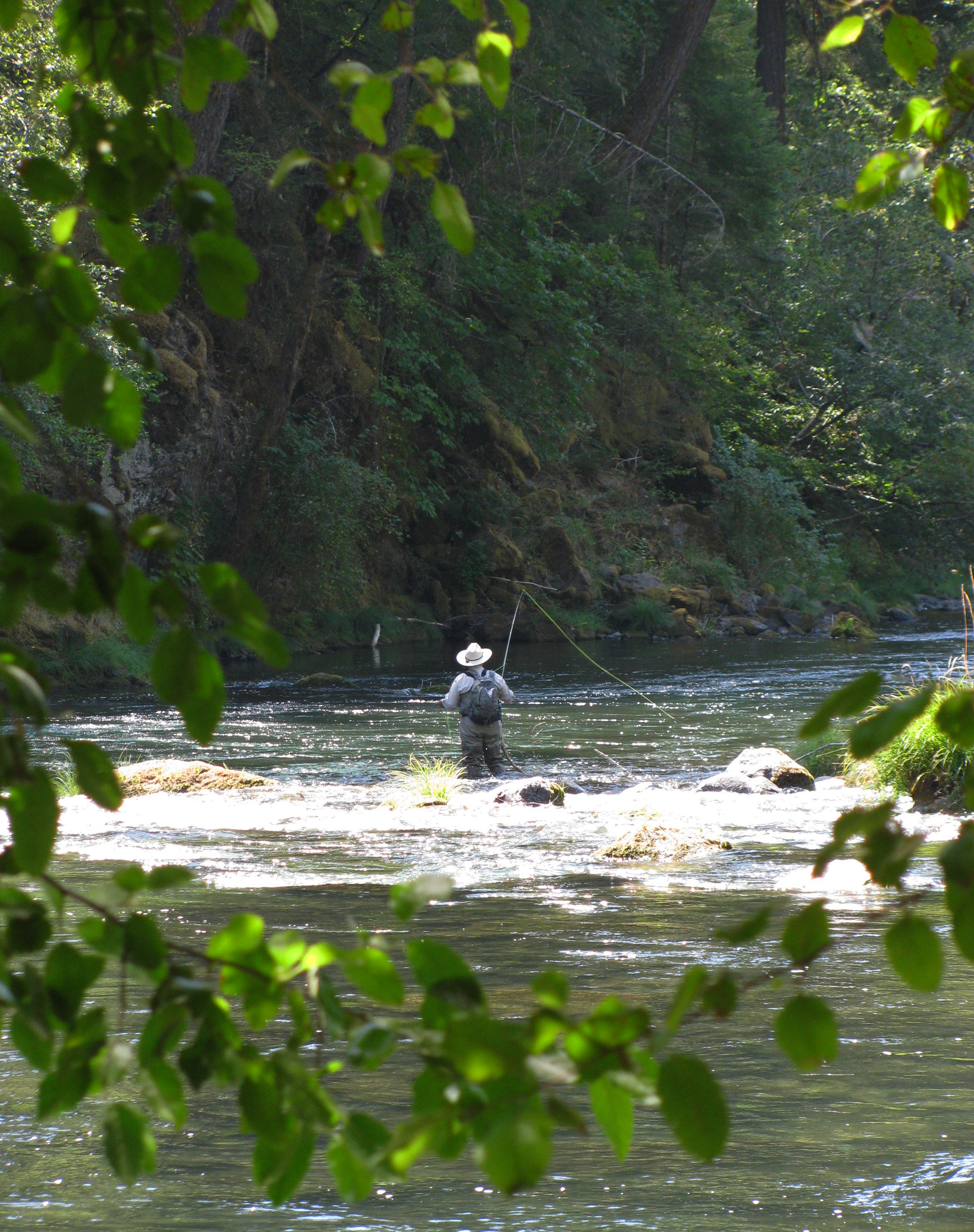 A lone fisherman fly-fishes the North Umpqua Wild and Scenic River.