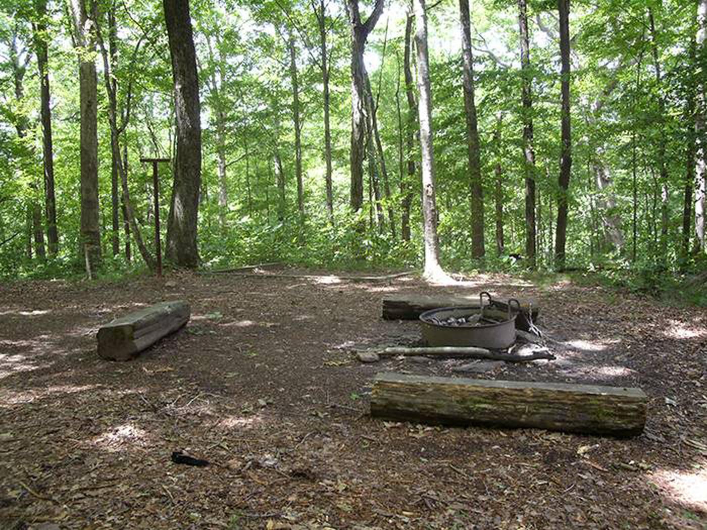 Back-country Second Creek campsiteSecond Creek Campsite