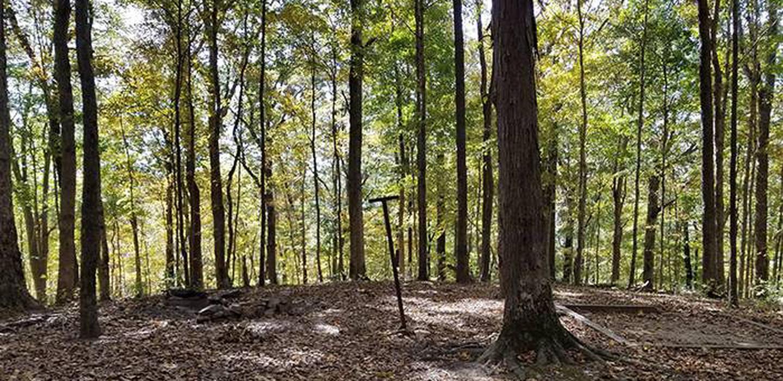 Back-country Turnhole Bend campsiteTurnhole Bend Campsite