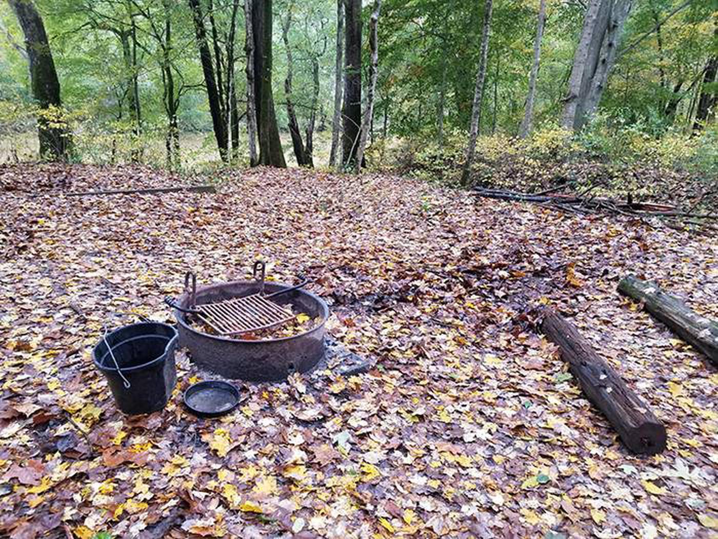 Back-country White Oak campsiteWhite Oak Campsite