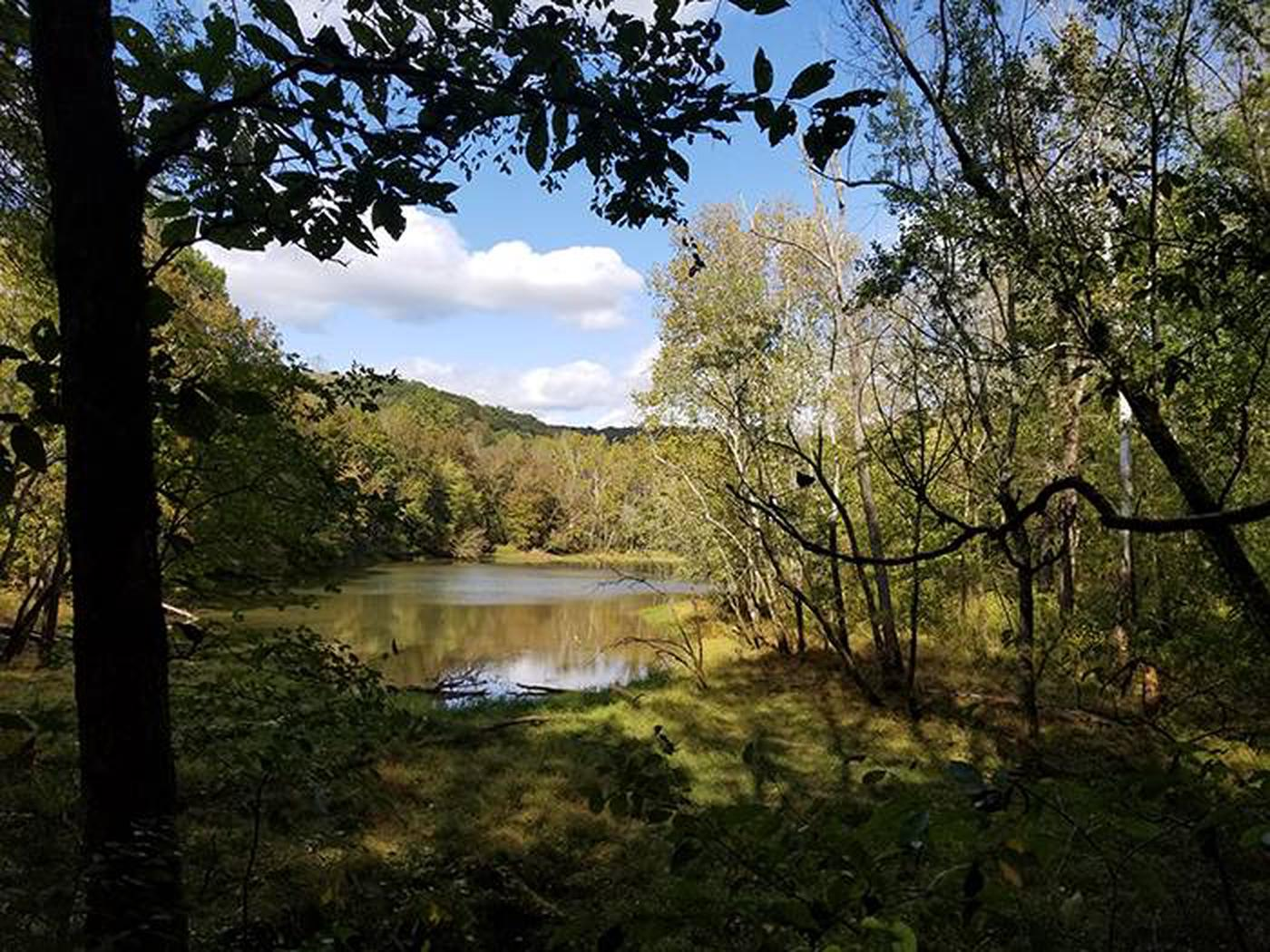First Creek LakeScenic First Creek Lake located on the north side of the park, a more primitive experience at Mammoth Cave National Park.