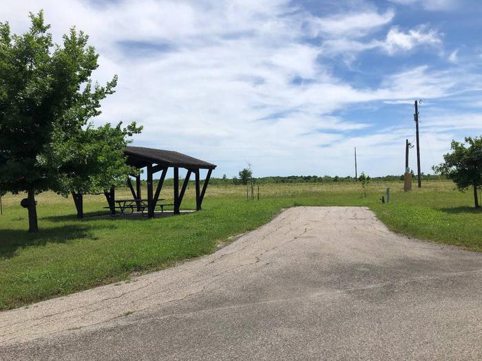 Willis Creek site #27