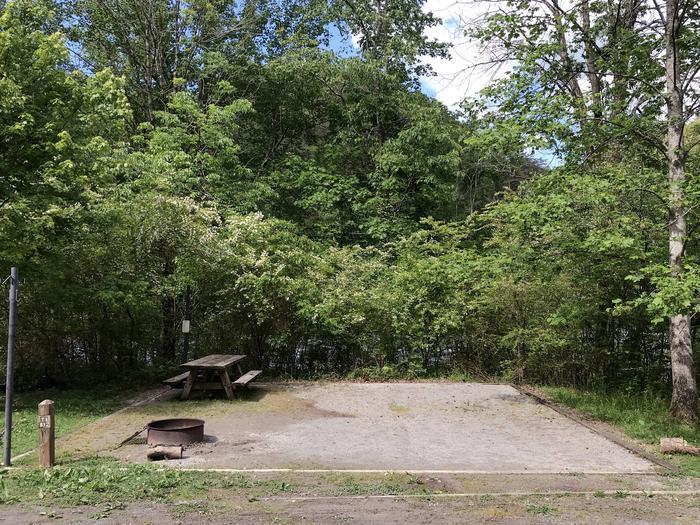 Site 1