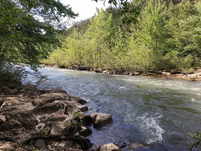 Ocoee River behind campsite