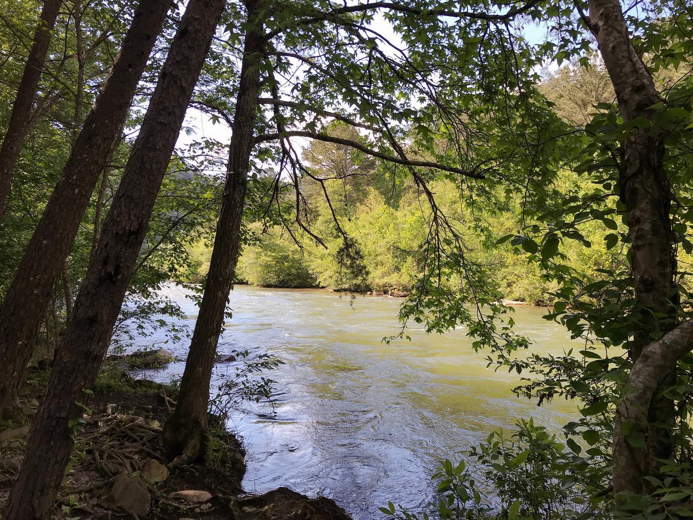 Ocoee River flowing beside campsite