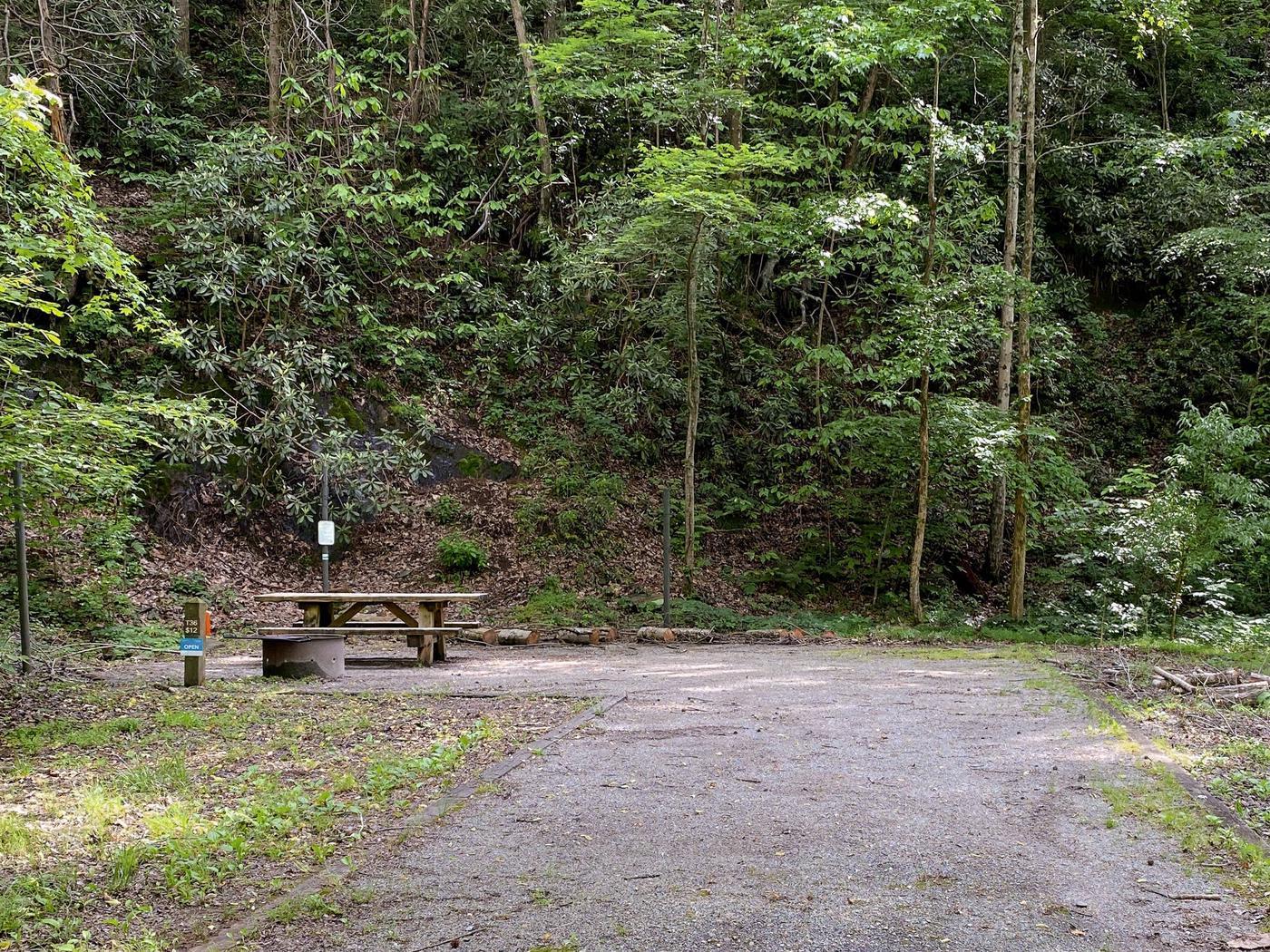 Site 36