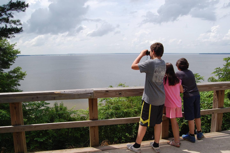 Bird Watchers!