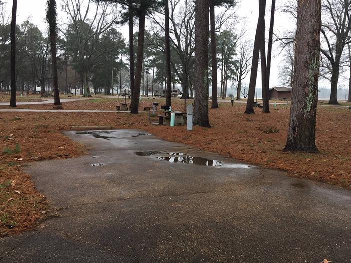 Oak Grove Site 5