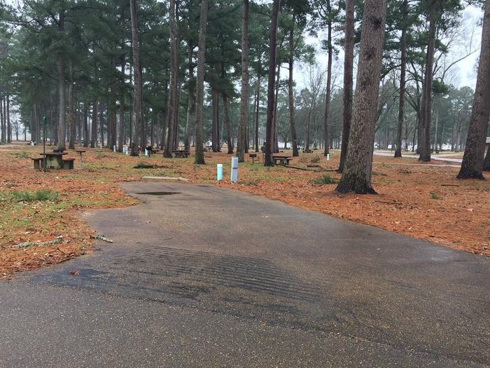 Oak Grove Site 8