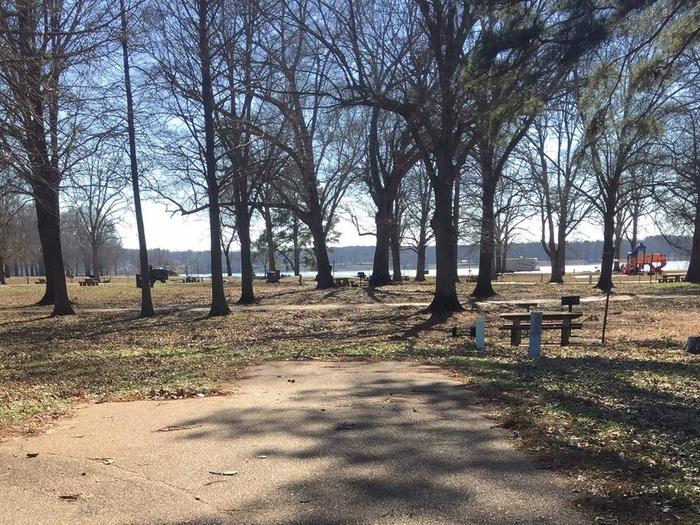 Oak Grove Site 12