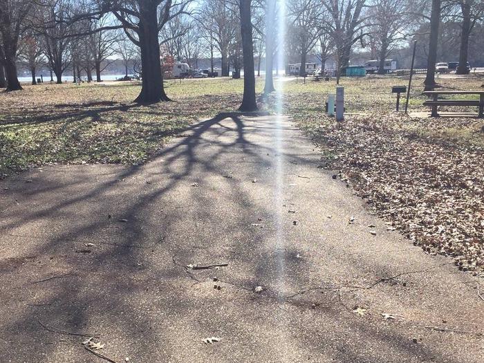 Oak Grove Site 19