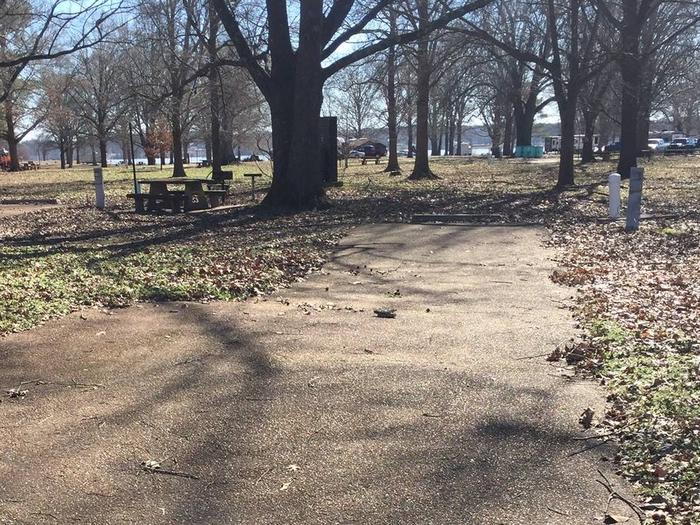 Oak Grove Site 22