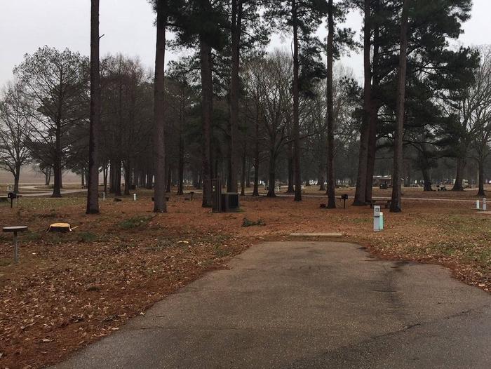 Oak Grove Site 36 Oak Grove Site 36