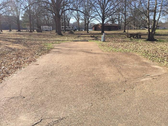 Oak Grove Site 41
