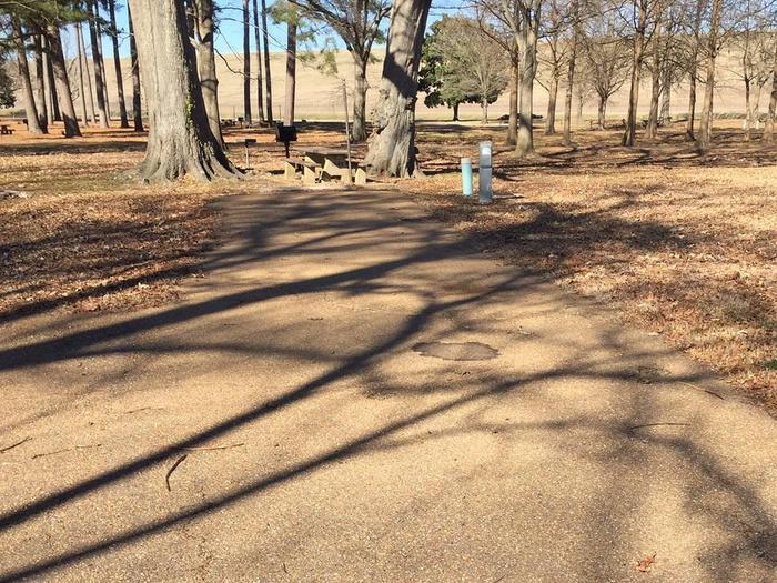 Oak Grove Site 43Oak Grove 43