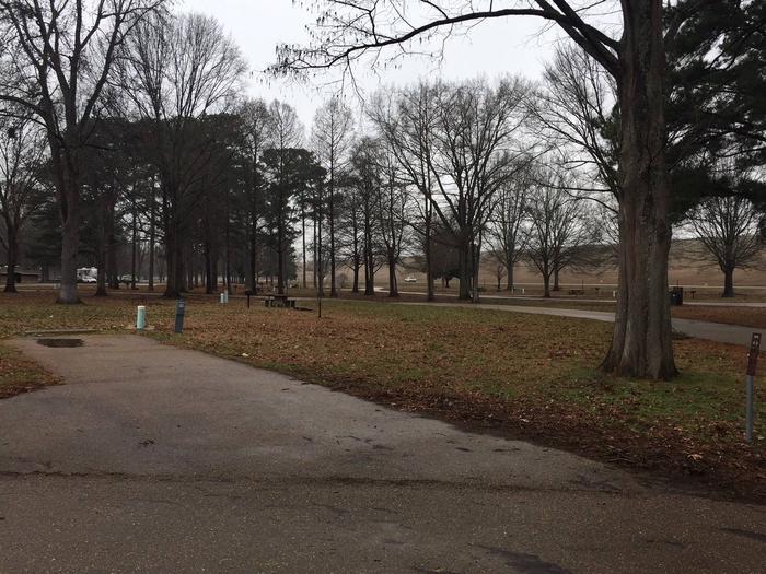 Oak Grove Site 48