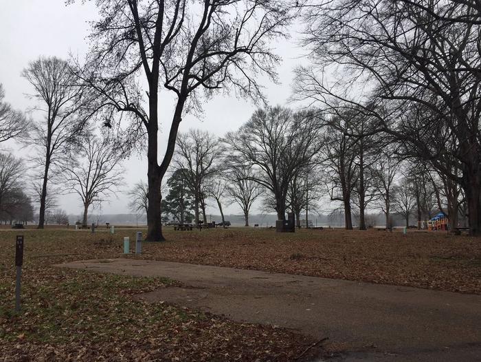Oak Grove Site 50