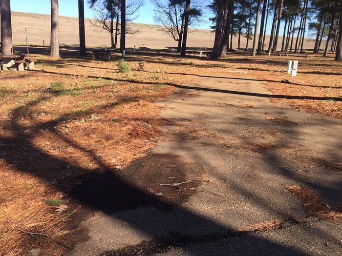 Oak Grove Site 51