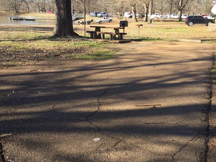 Oak Grove Site 65