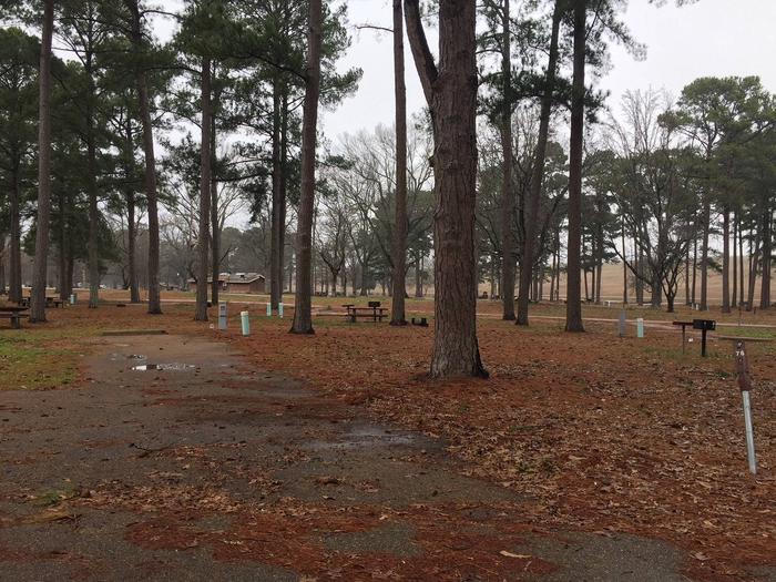 Oak Grove Site 76