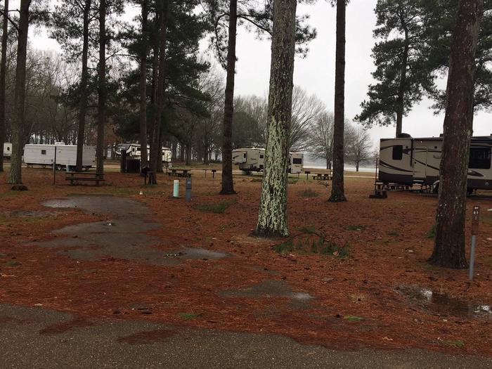 Oak Grove Site 80
