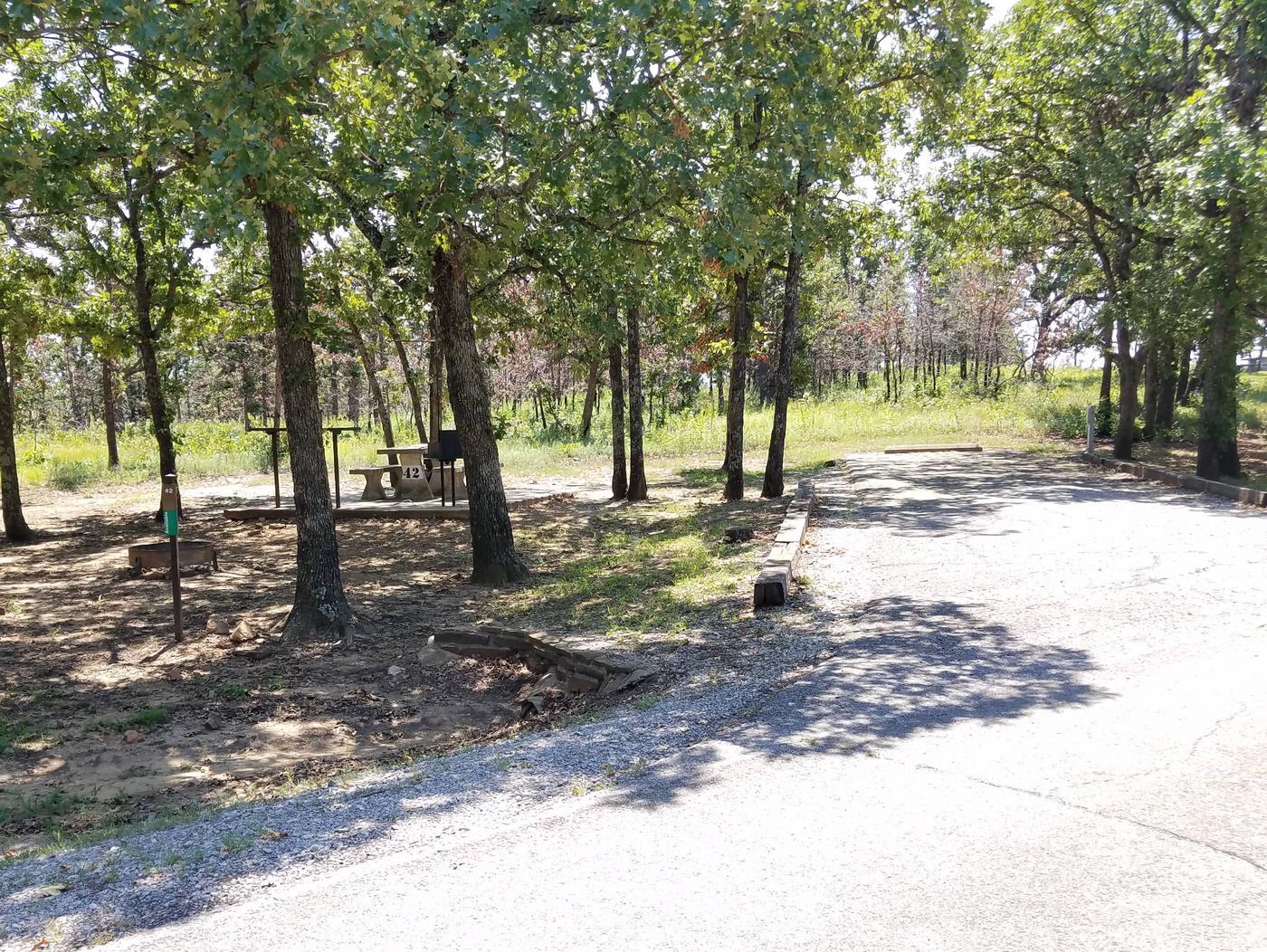 Birch Cove Site 42