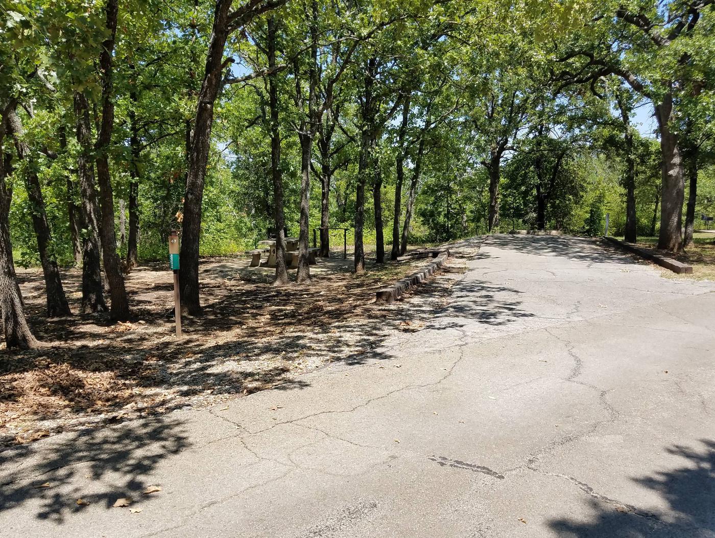 Birch Cove Site 47