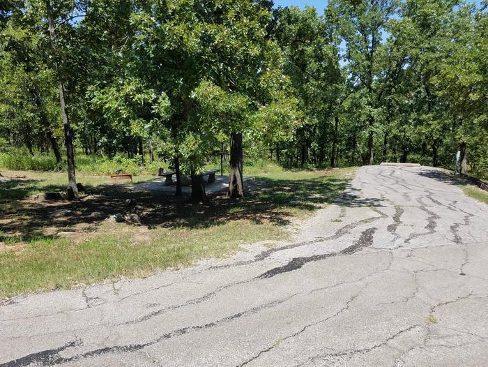 Birch Cove Site 51