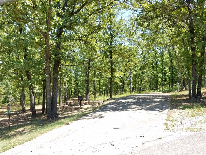 Birch Cove Site 64