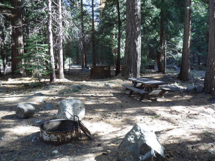 Campsite 15