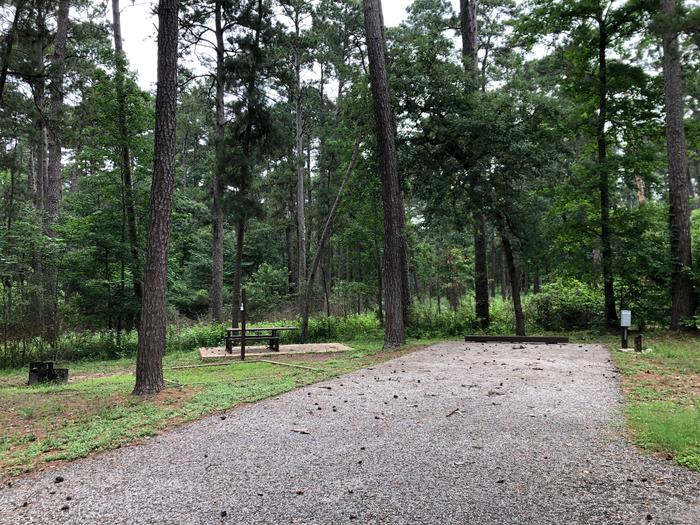 Site 3View of the woods