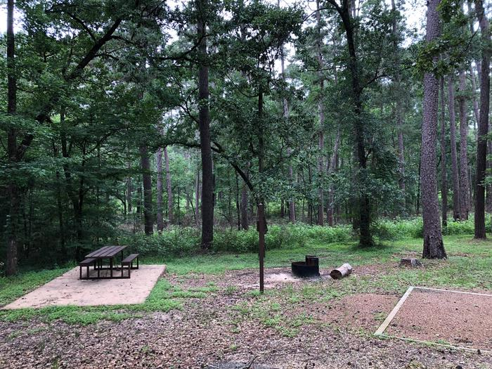 Site 7Site with picnic table and fire ring near woods