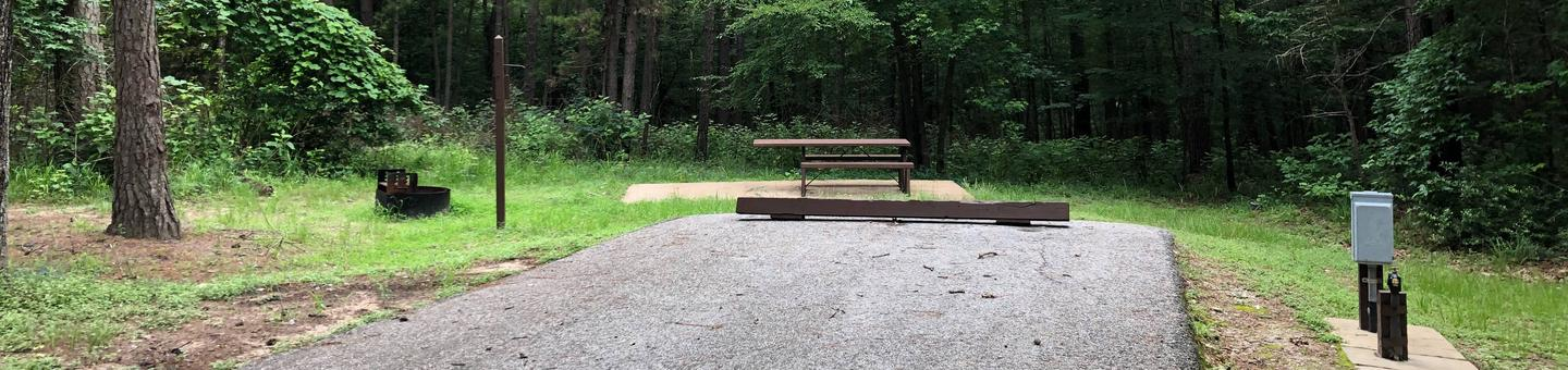 Site 8Site 8, picnic table and fire ring backing up to forest