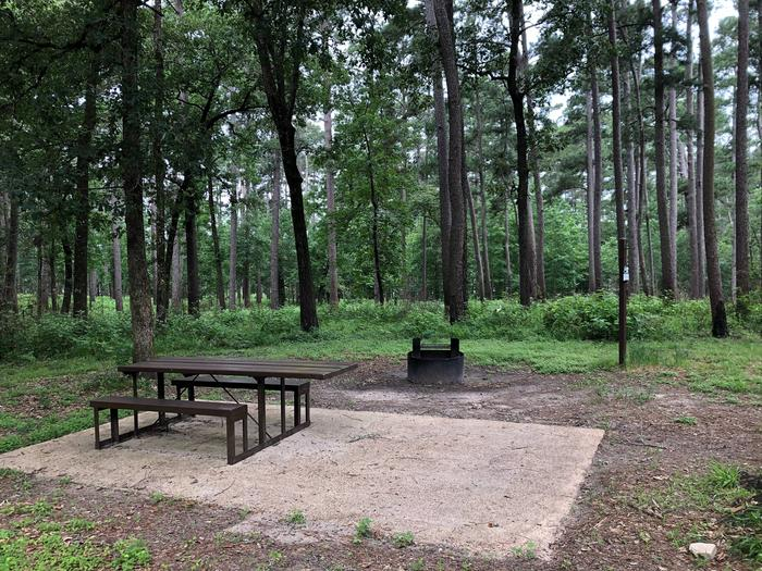 Site 9Site with picnic table and fire ring near woods