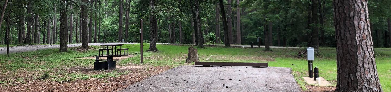 Site 12Inside the road loop