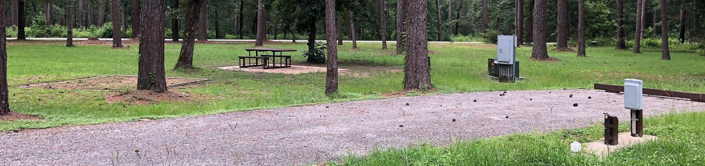 Site 16Site outside loop near walking path