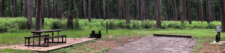Site 23Site near woodline