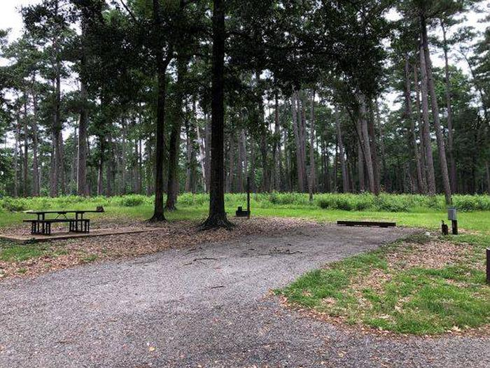 Site 25 Cagle Recreation Area