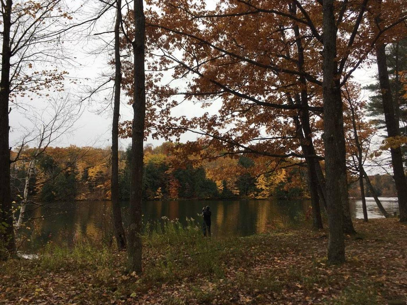 Manistee River Backwaters