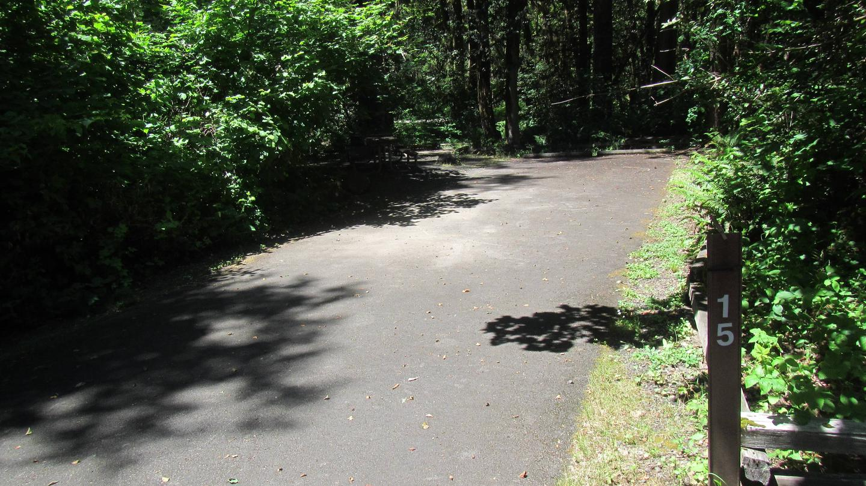 Site 1562' x 15' Drive