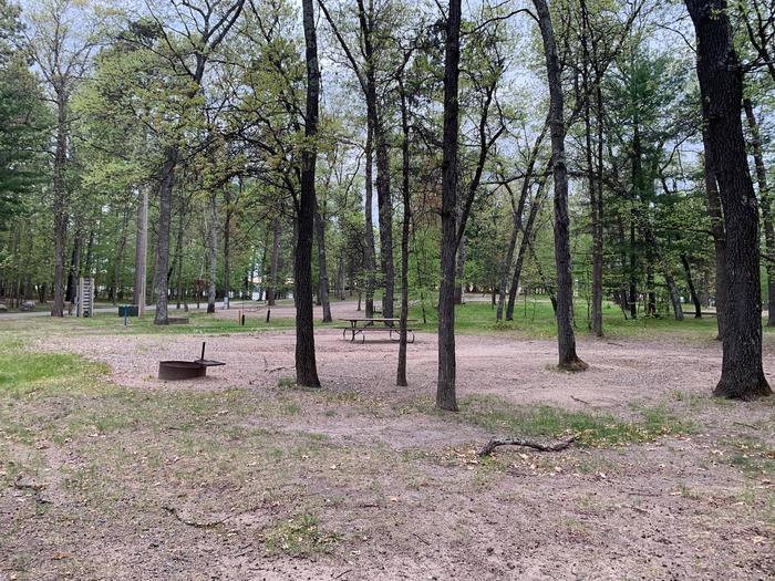 Campsite #52