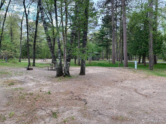 Campsite #67
