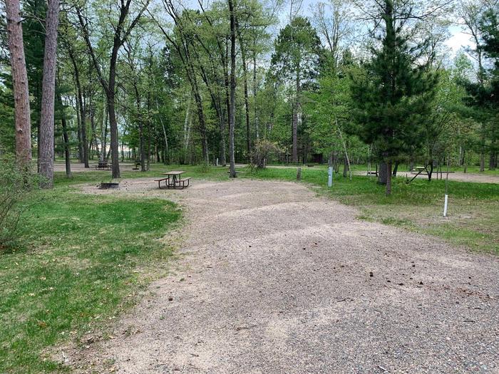 Campsite #81