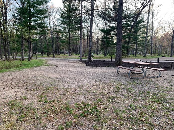 Campsite #104 BackCampsite #104
