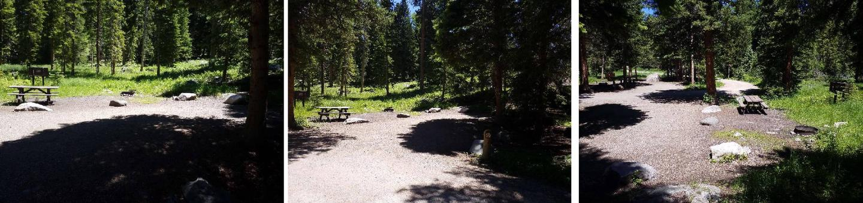 Hunter Peak Campsite 8