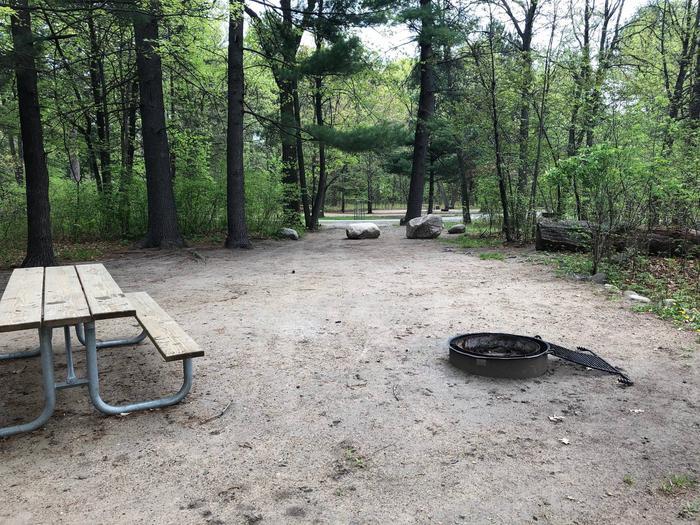 Campsite #29