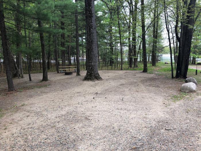 Campsite #41