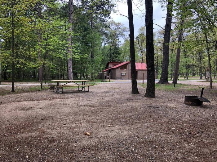 Campsite #43 BackCampsite #43
